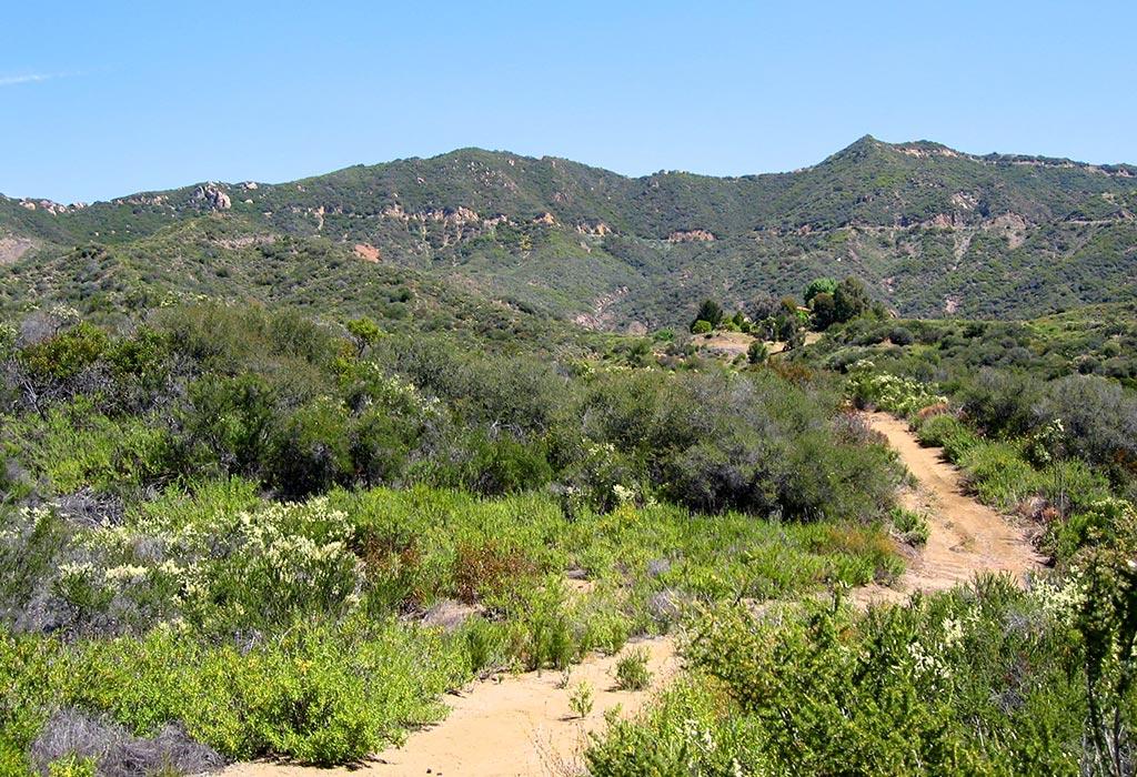 Canyon Equity - Ostara Malibu California